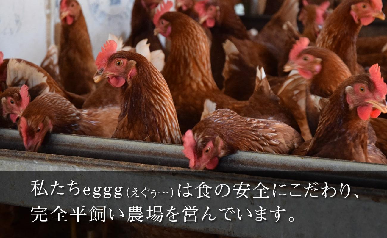 私たちは食の安全にこだわり、 完全平飼い農場を営んでいます。