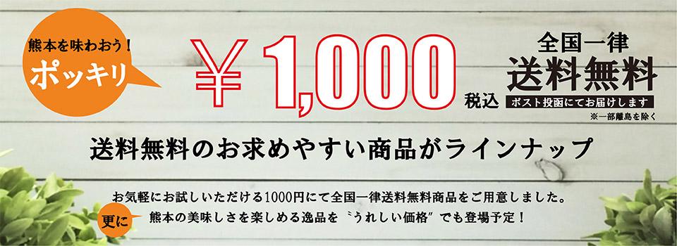 1,000円ポッキリ送料無料