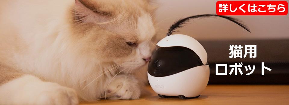 猫用自走式カメラ付きロボットEbo(イーボ)